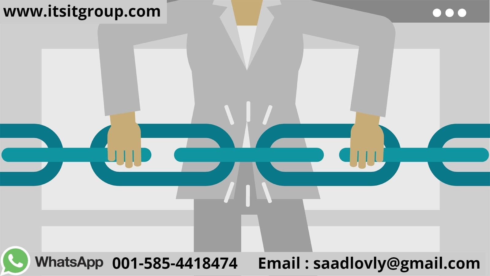 quality backlinks service
